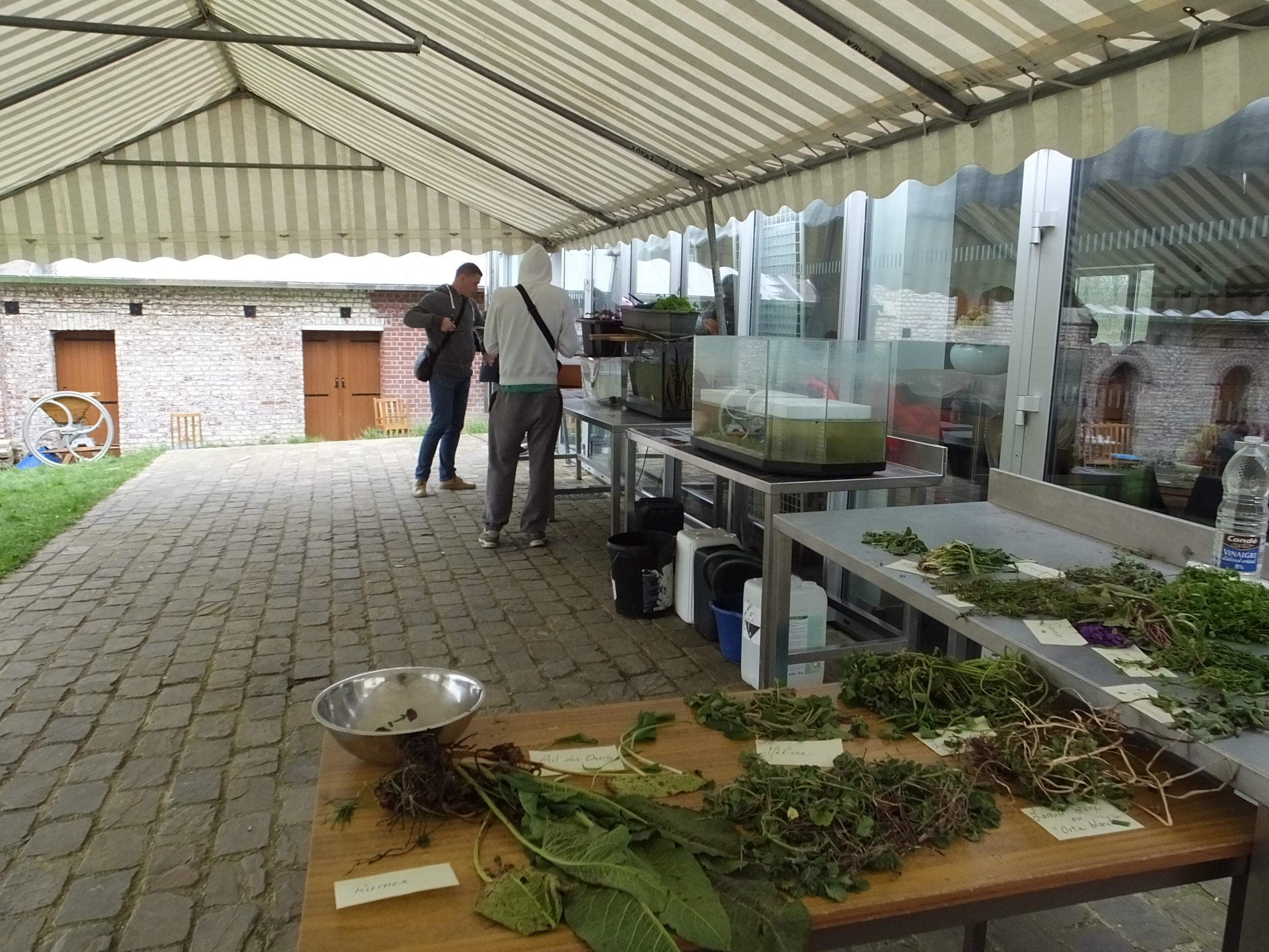 Foruma agroecologie (1)